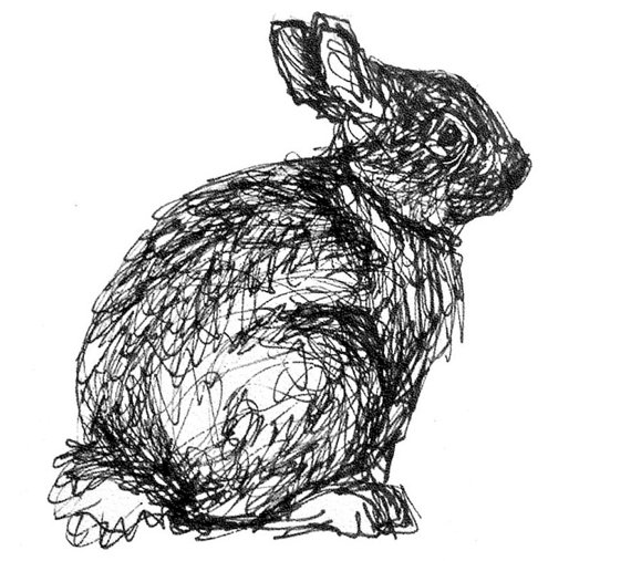 Drawn rabbit black and white And ink cottontail art decor