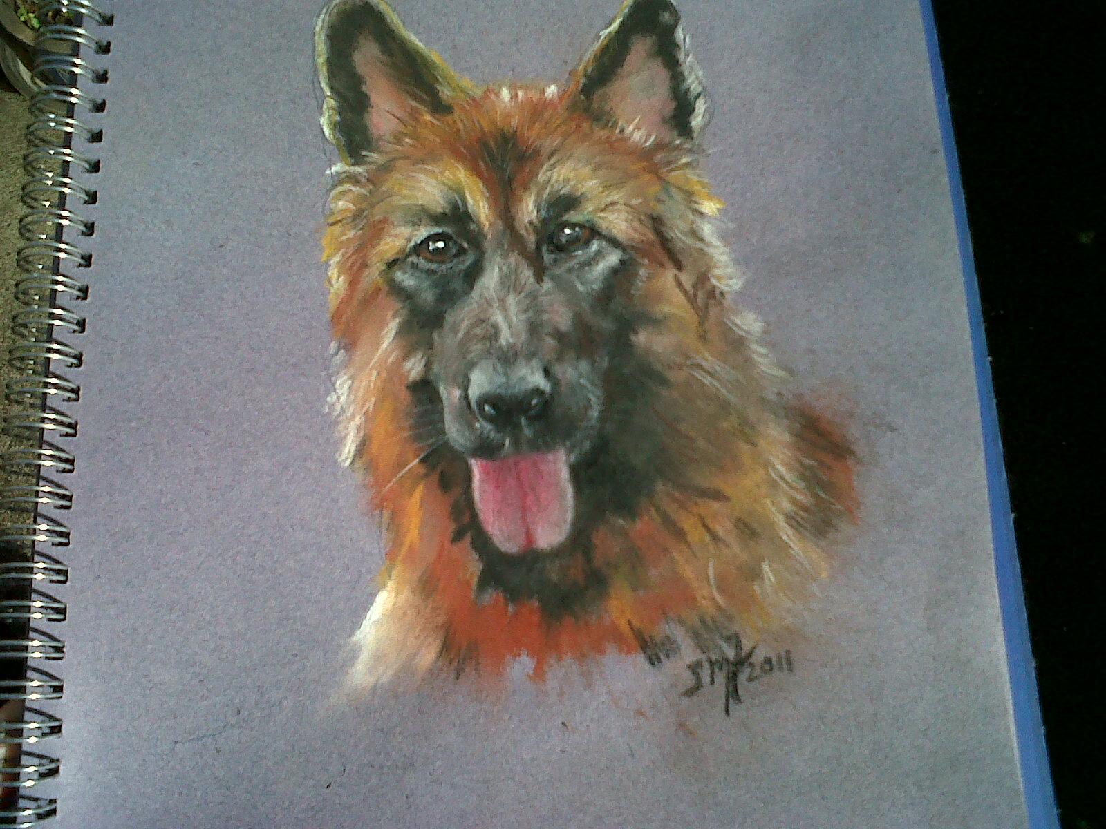 Drawn hawk german Shepherd Drawings Dreamwalker's German Pastel