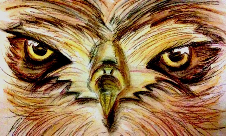 Drawn hawk hawk eye Birds Hawk by Raisa Raisa