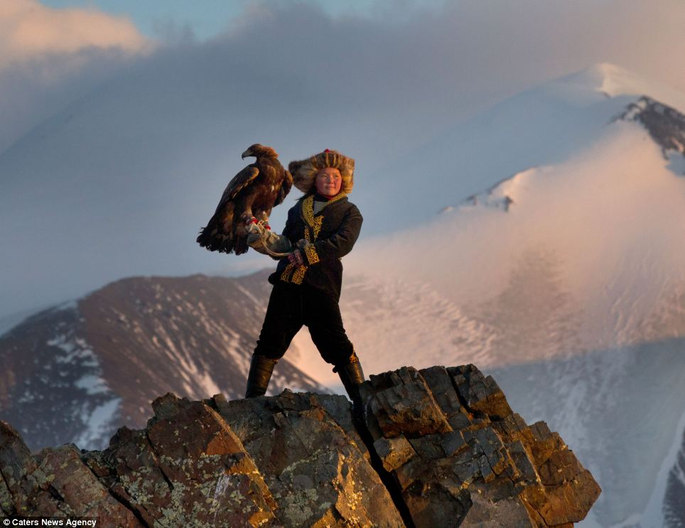 Drawn hawk hunter The Golden Girl: portrait 'I
