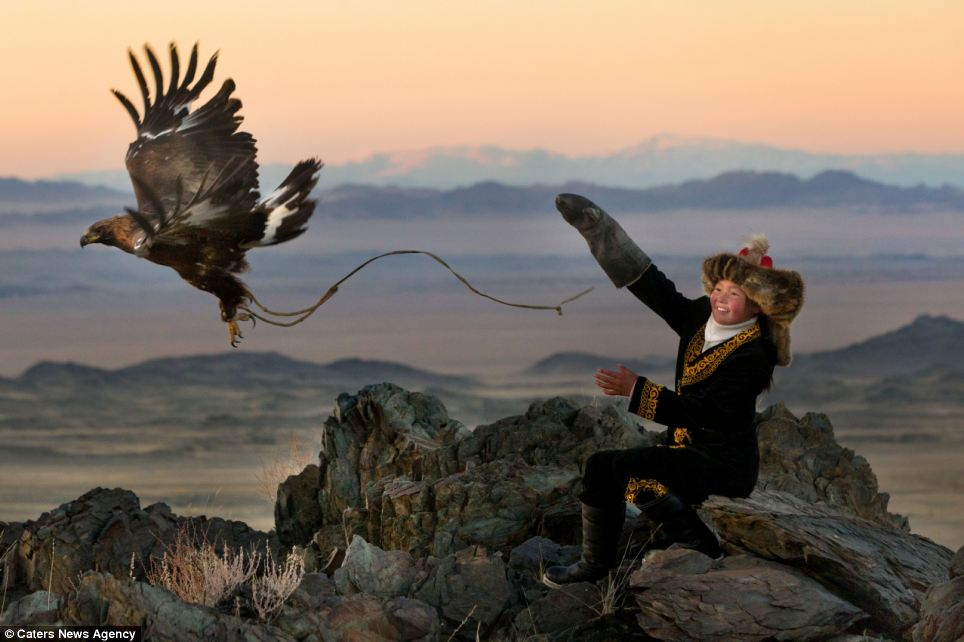Drawn hawk hunter Young  females breaking photographs