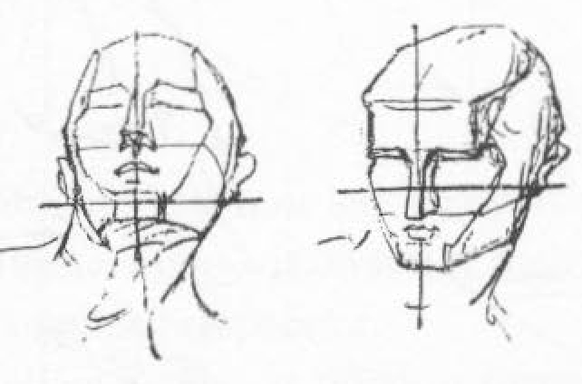 Drawn head In to drawing Proportions How