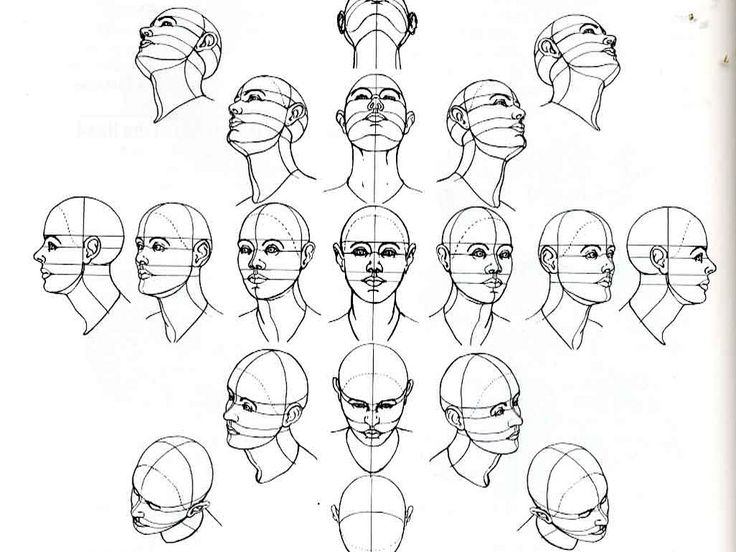 Drawn head On heads learning tutorials of