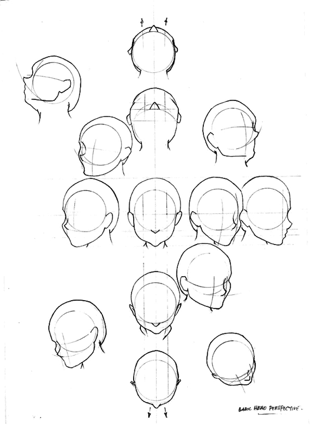 Drawn head Draw Draw how_to_draw_the_human_head_10 To The