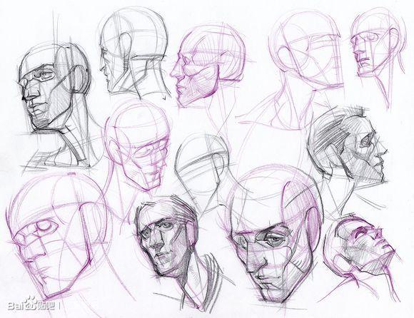 Drawn head anatomical Head more human on head