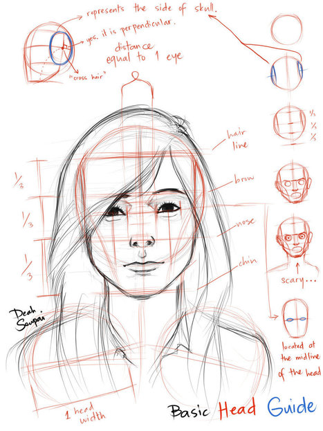 Drawn head anatomical Drawing References it Resources in
