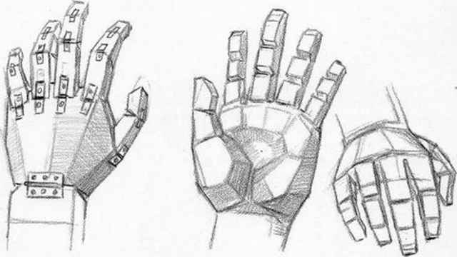 Drawn head anatomical Hand Anatomy the the and