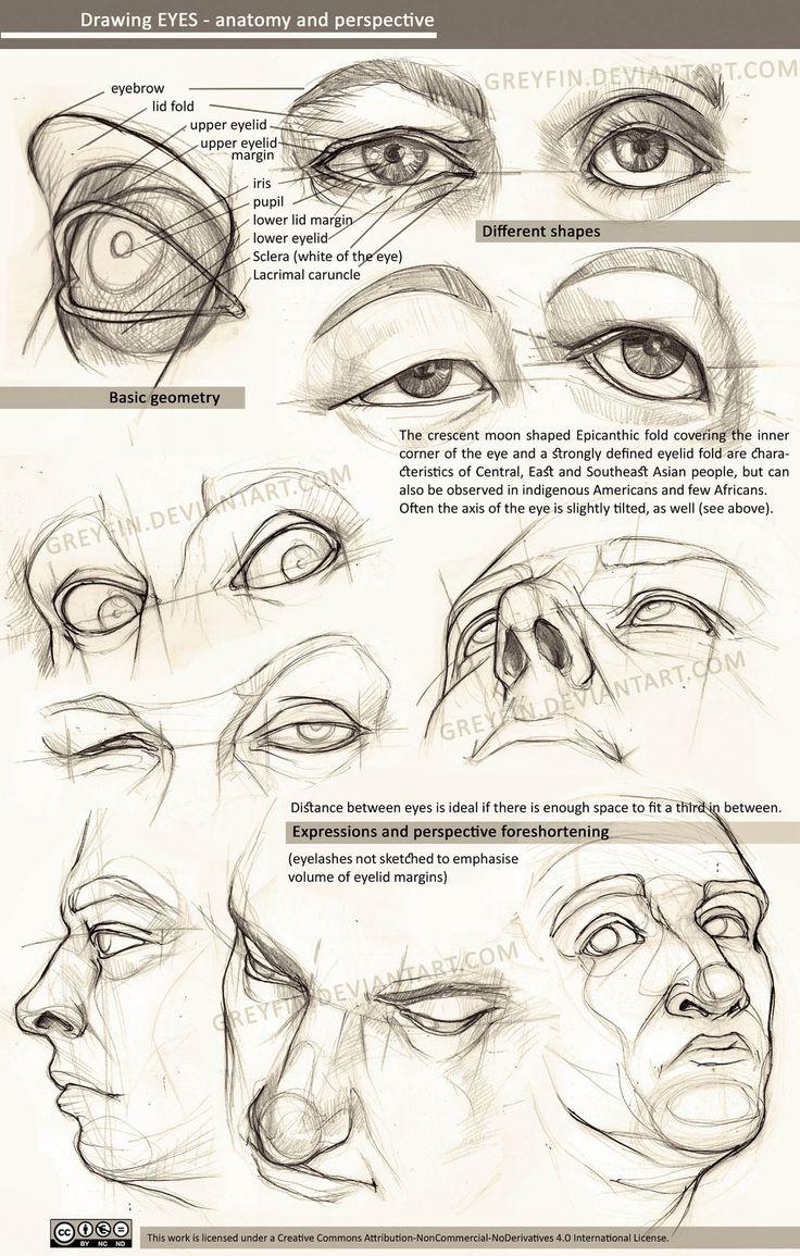 Drawn skull perspective Com eyes Drawing @DeviantArt images