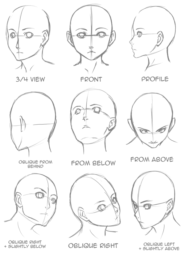 Drawn profile different Draw Head by HtD: Step