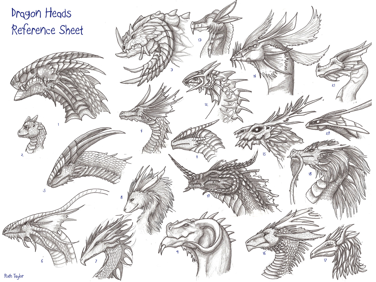 Drawn amour dragon head Reference archir on head
