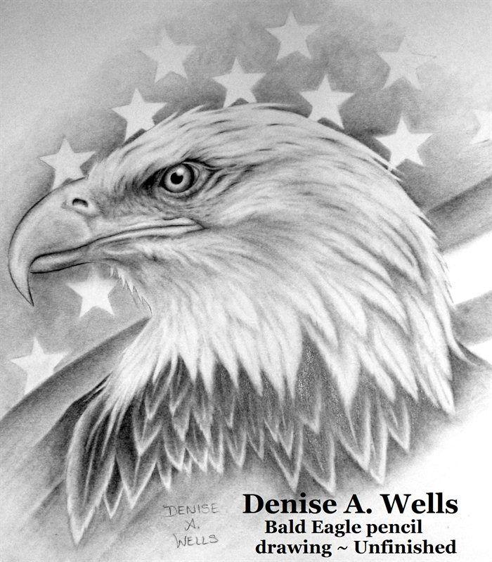 Drawn steller's sea eagle detailed Ideas Best Eagle 25+ Drawings