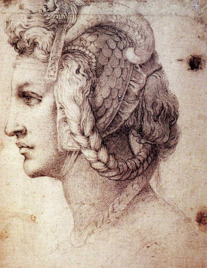 Drawn profile detailed Extra Drawings  Michelangelo reveal