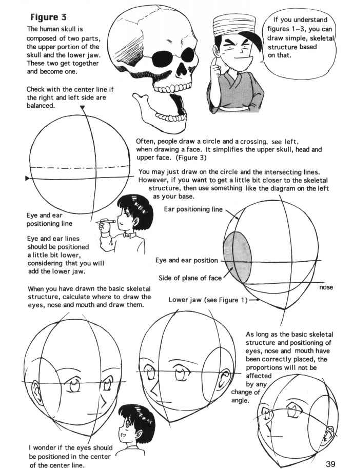 Drawn figurine head position Characters Face Proportion Face Joshua
