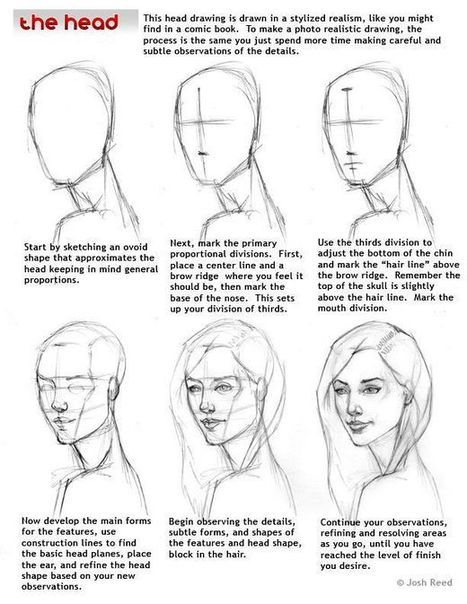 Drawn profile japanese face And Reference References Drawing Guide
