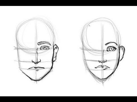 Drawn photos men's face Techniques face Best women 30