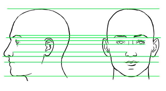 Drawn profile basic Life Faces drawing Bring 10