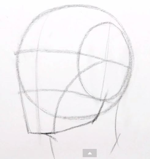 Drawn head proko Art Learn 1Basic For Faces