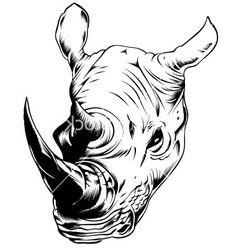 Charging Rhino clipart Head Pinterest Rhino poly Head