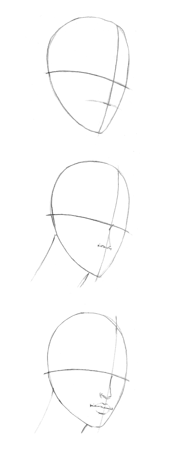 Drawn profile head profile For For THE Heads VIEW