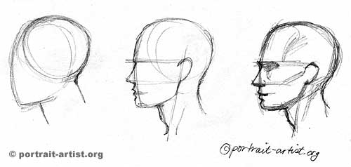 Drawn profile portrait drawing Drawing step Profile step profile