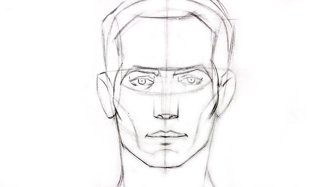 Drawn portrait front view Best head Learn Drawing Drawing