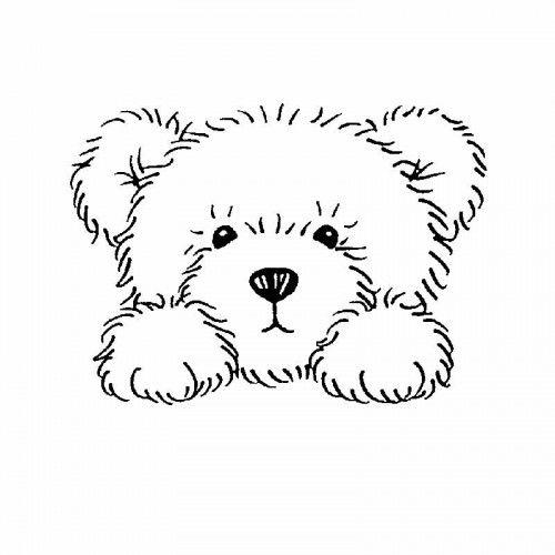 Teddy clipart face #10