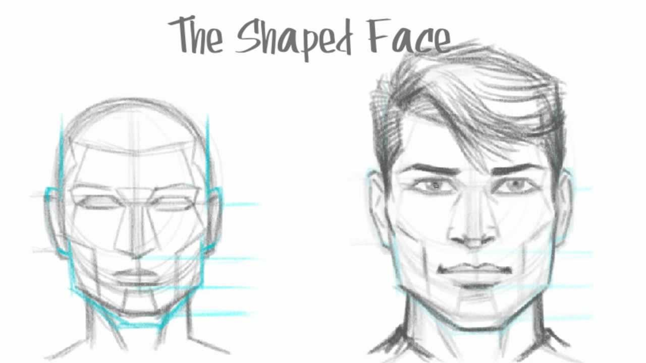 Drawn portrait basic Step How how Tutorials Drawings