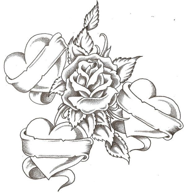Drawn rose awesome Best on 252 Pinterest more