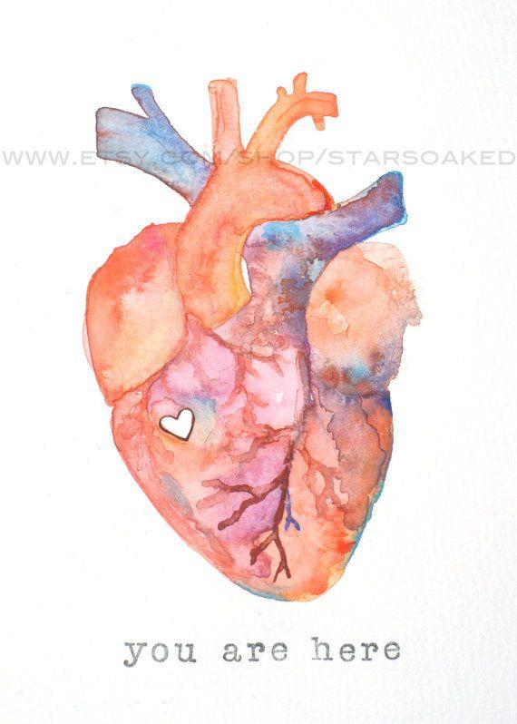 Drawn heart human heart Human Love ideas Heart Anatomical
