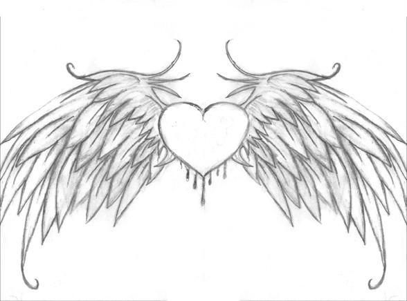 Drawn hearts wing By images with Bio on