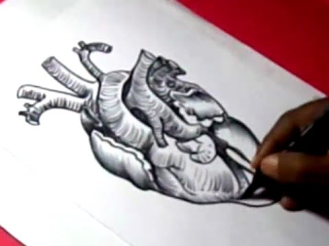 Drawn hearts body HEART for to YouTube DRAWING