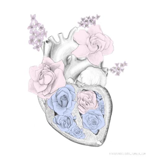 Drawn hearts png tumblr Heart art Buscar heart con