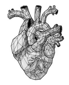 Drawn hearts simple art And Unique Anatomical  More