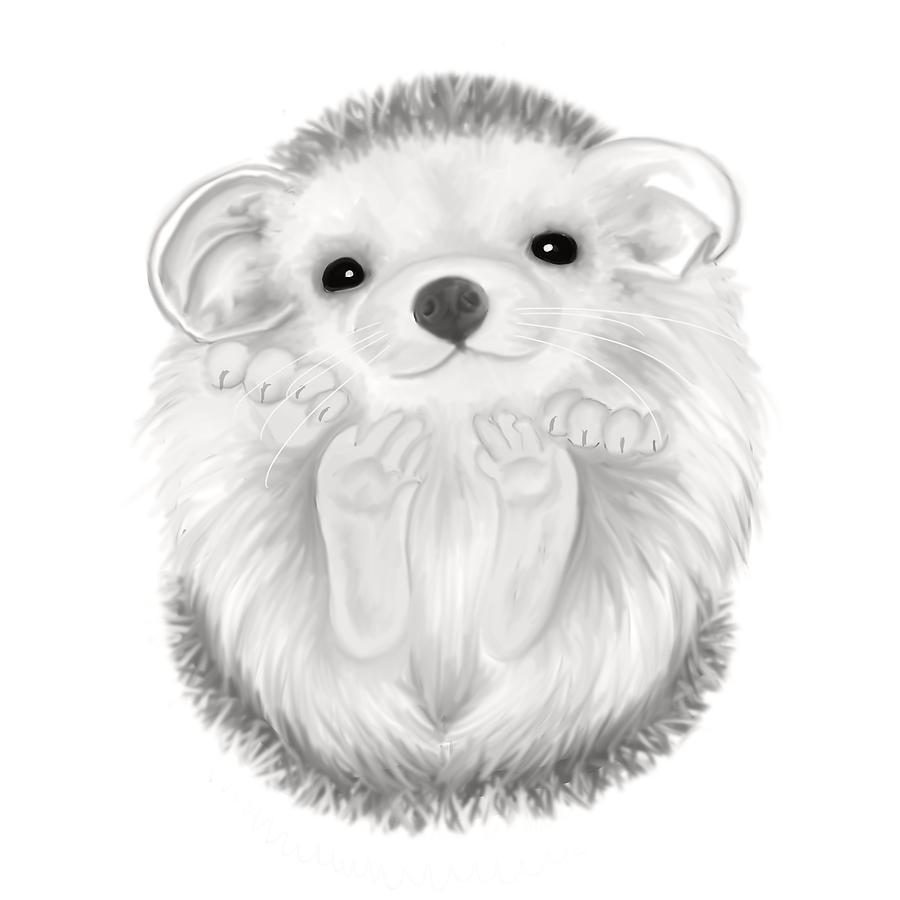 Drawn hedgehog Hedgehog Drawing Art Pencil Drawing