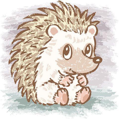 Drawn hedgehog Sanogawa on Hedgehog 25+ best