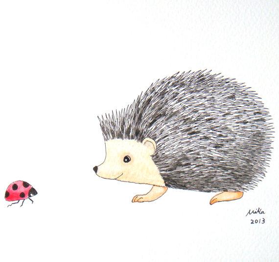 Drawn hedgehog Ladybug Illustration Ink Red Watercolor