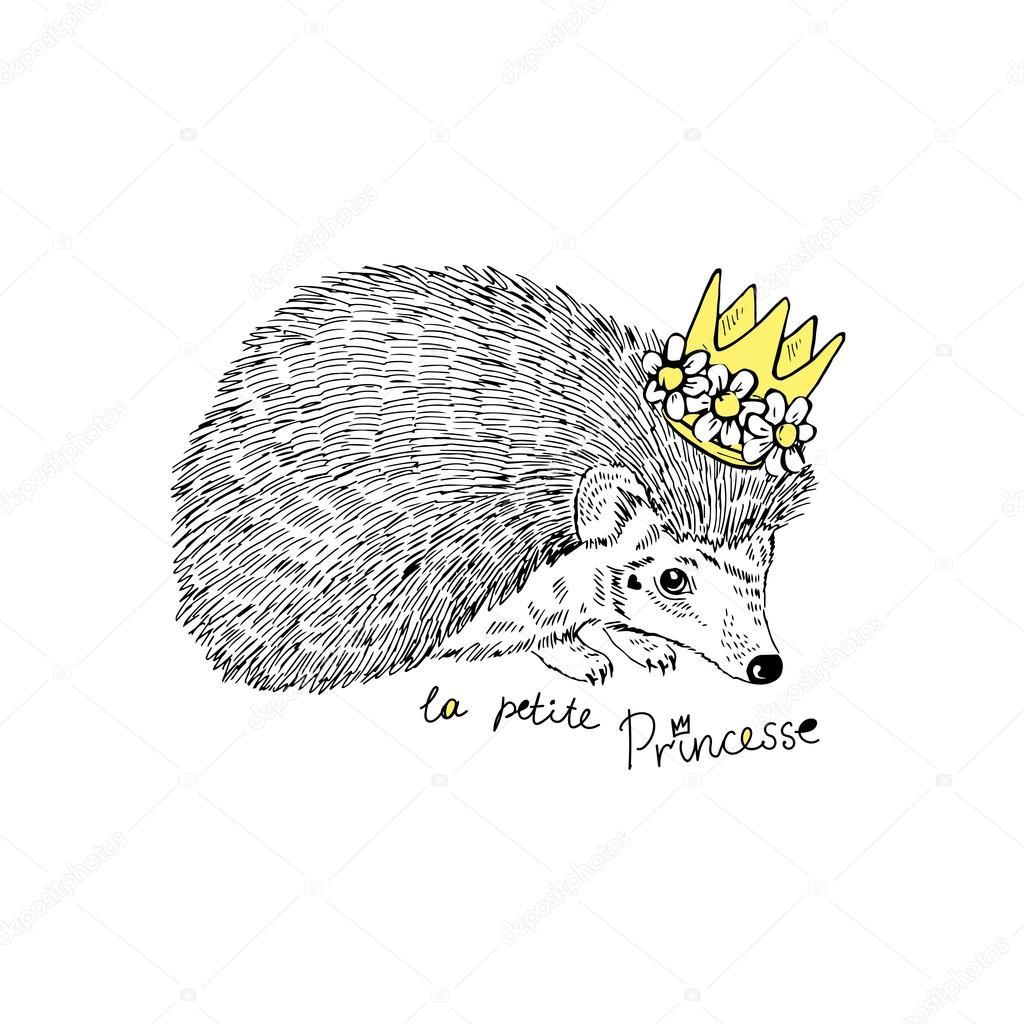 Drawn hedgehog Stock princess angelloz hedgehog #82712740