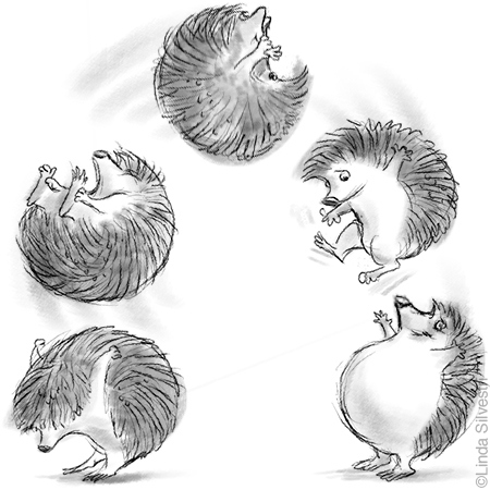 Drawn hedgehog anime Of BACKFLIP #art HEDGEHOG folks