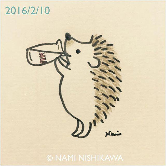 Drawn hedgehog anime Best Does Milk Hedgehog Hedgehog