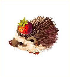 Drawn hedgehog anime Really cute! Hedgehog of