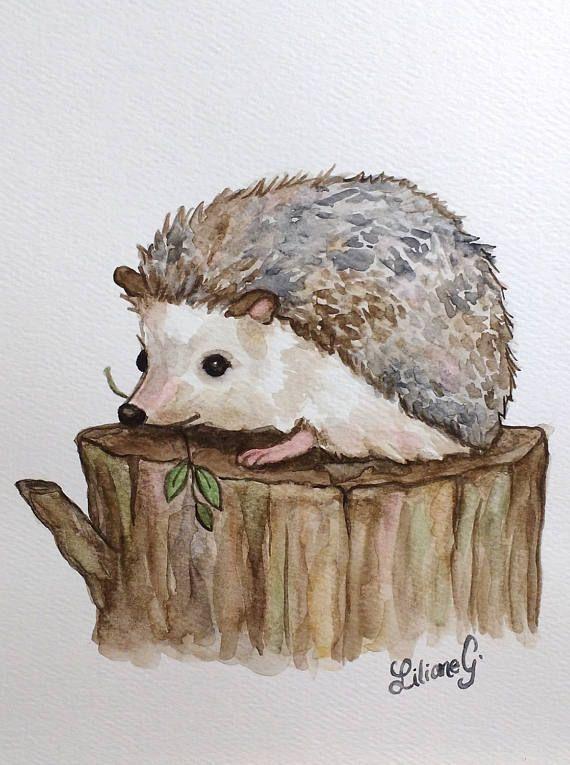 Drawn hedgehog doodle Watercolor) drawing 25+ Hedgehog Pinterest