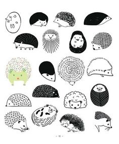 Drawn hedgehog zentangle Jour d'un Pinterest hedgehogs! 20