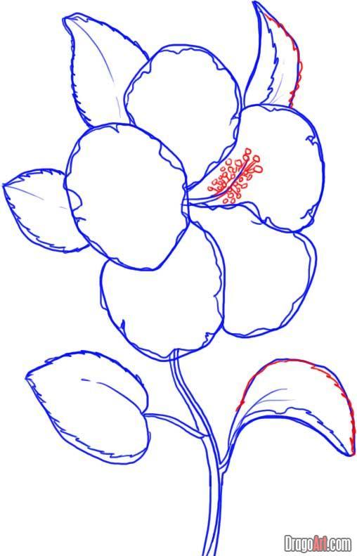 Drawn hibiscus beautiful flower FREE How to hibiscus yellow