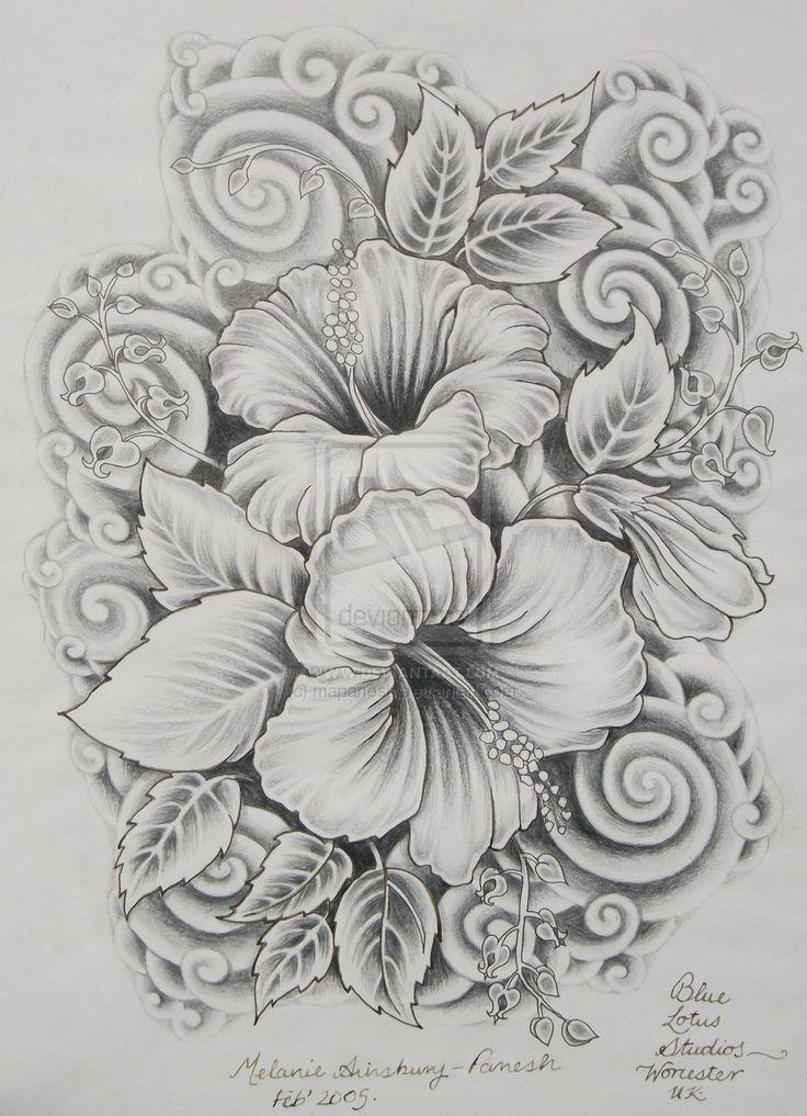 Drawn hibiscus sketch Surreal ideas 2014 drawing mapanesh