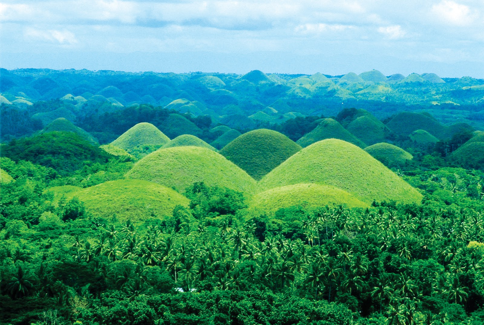 Drawn hill bush Most Bohol in Landmarks Stunning
