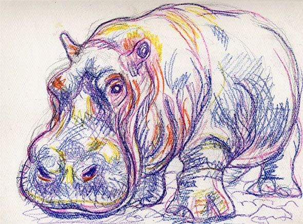 Drawn rhino hippo Ideas Leon artists Hippo on
