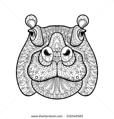 Drawn rat hippo For head hippopotamus adult drawn