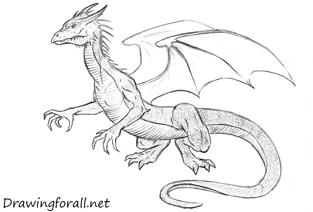 Drawn horns curved dragon A draw dragons Dragon to