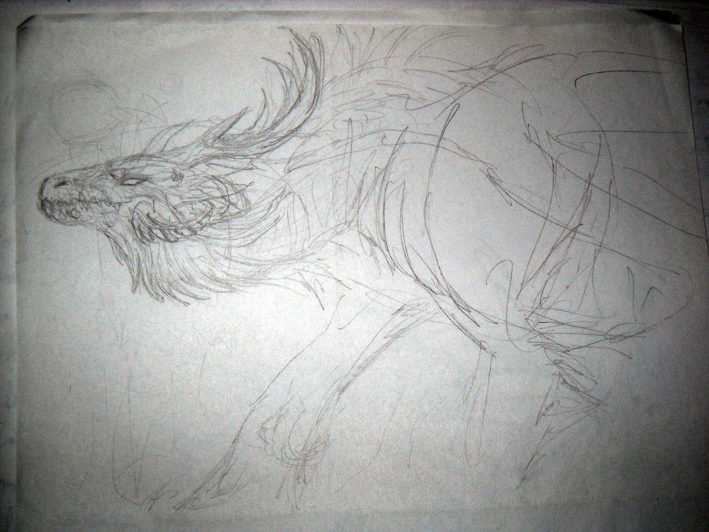 Drawn horns curved dragon On Wolf Wolf curved horns