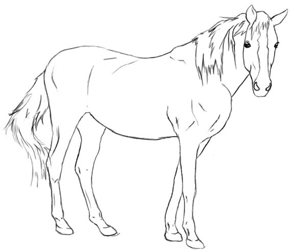 Drawn horse Your and do How A